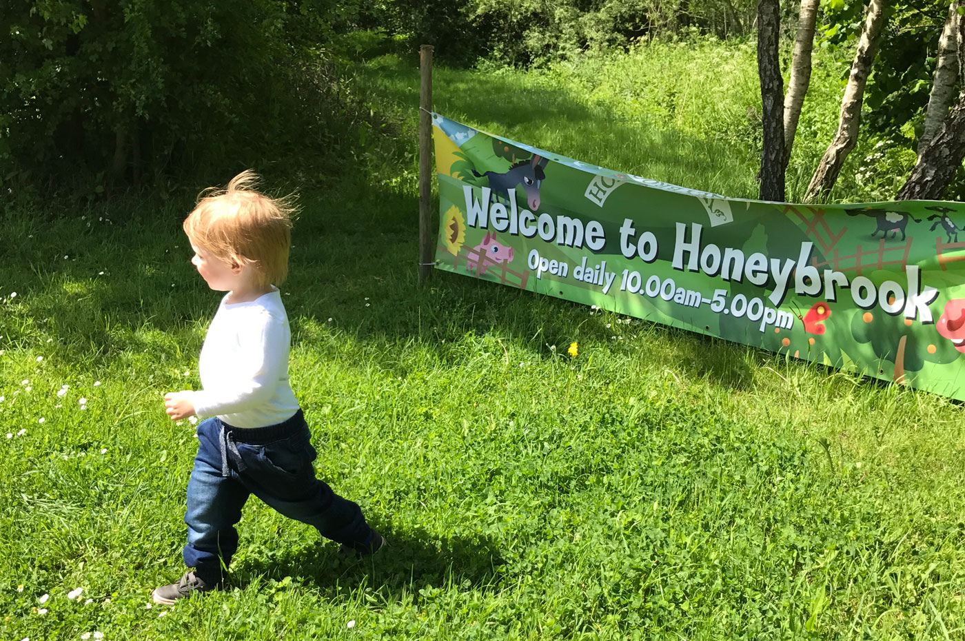 A Sunday Trip to Honeybrook Farm